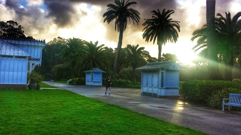 Bieganie Grand Parku wśród wściekłej zieleni